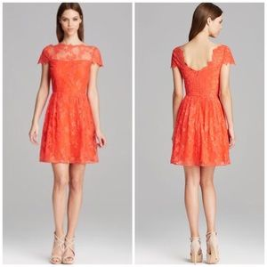 Hannah Cap Sleeve Illusion Neck Fit & Flare Dress